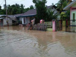Banjir Rendam 12 Rumah di Balantak