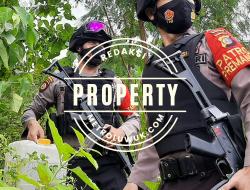 Sepekan Operasi KKYD Banggai, Kasat Shabara: Menyita 150000 mililiter Miras Jenis Cap Tikus