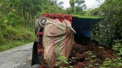 Jalan Balantak-Bualemo Nilai 7,5 Miliar Khusus, Penurunan Kadueng Anggarannya Terpisah